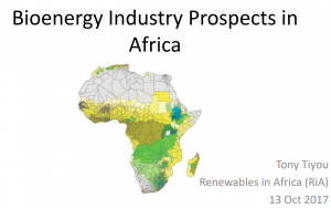 Bioenergy Industry Prospects in Africa 300x188 - Reports