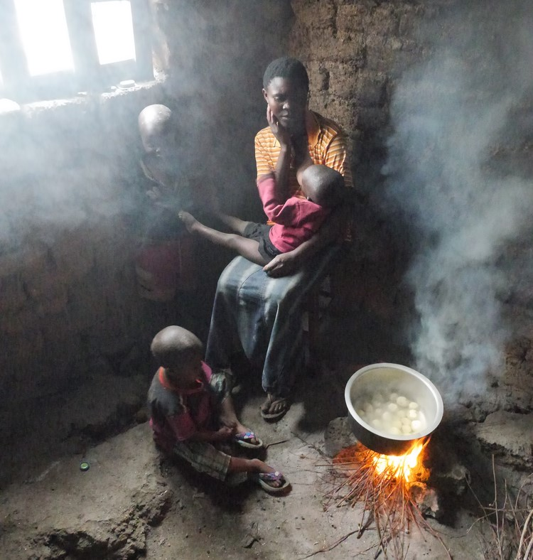 Brave Woman cooking somewhere in Africa - Biofuels: a versatile power OPTION to accelerate energy transition in post-Covid Africa