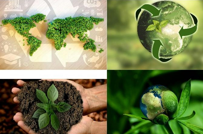 HOW TO BECOME A SUSTAINABLE BUSINESS: 5 STEPS