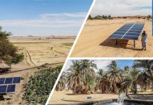 "How ""Going Solar"" Boosted Farm Productivity by 50% in Sudan"