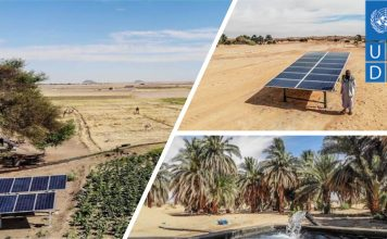 """How """"Going Solar"""" Boosted Farm Productivity by 50% in Sudan"""