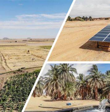 Going Solar in Sudan 356x364 - Home