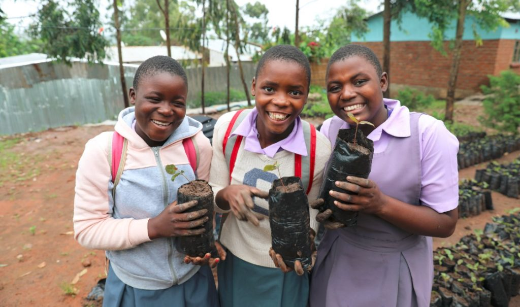 Jacaranda School students 1024x605 - Lessons from Malawi: Solar Energy Needs Local Leaders