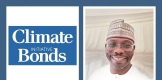 Can Africa Green Bonds be the future of funding? Climate Bonds Initiative Expert tells us all