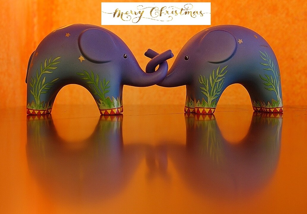 Orange Elephant Xmas 2 - Christmas Recap and  Green Quiz!