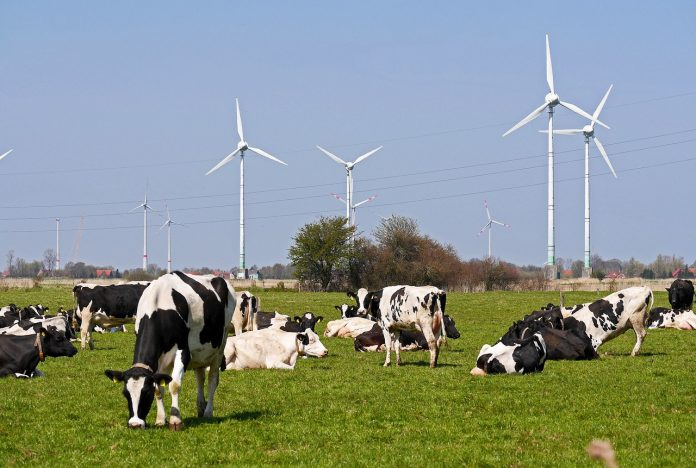 Why is Now the Time to Buy a Renewable Farm?