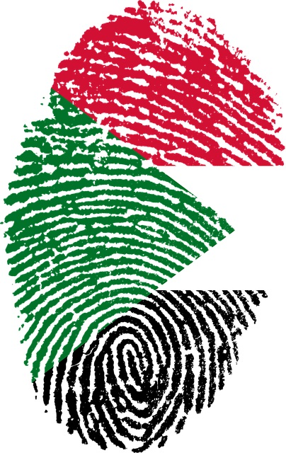 Sudan Flag - What are the key elements to consider when planning for Sudan's Wind Power adoption?