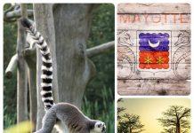 MADAGASCAR AND MAYOTTE