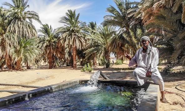 Comment le «passage au solaire» a-t-il augmenté la productivité agricole de 50% au Soudan?